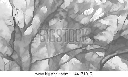 Horizontal black and white illustration background hd