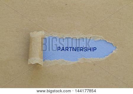Partnership word written under torn paper .