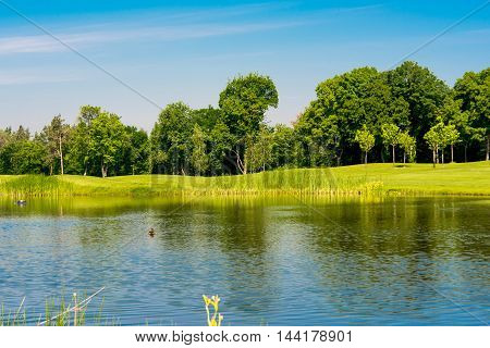 spring landscape of the golf course nature