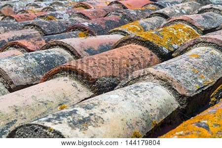 Old tiles of a roof with moss. Closeup angle view.
