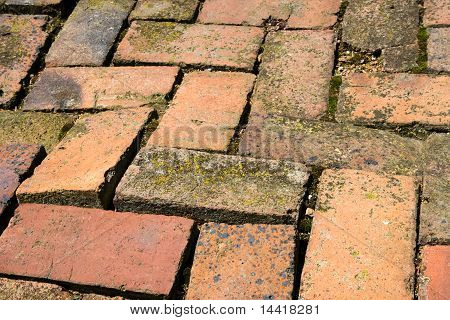 Old Brick Path