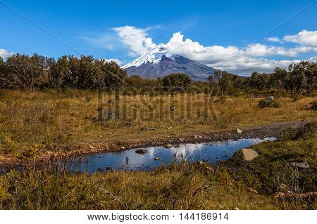 Puddle of water in the Cotopaxi National Park with volcano in the background