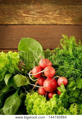 Large bunch of fresh Organic vegetables, radish, spinach, salad and greens on old wooden table, closeup. Dark rustic style.