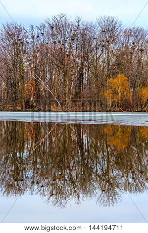 A reflection of Rookery view park in Wausau Wisconsin.-1.jpg