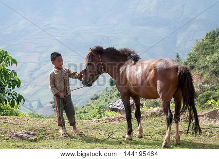 YEN BAI, VIETNAM, July 24, 2016 ethnic Hmong boys, highland Yen Bai, Vietnam, breeding horses, mountain