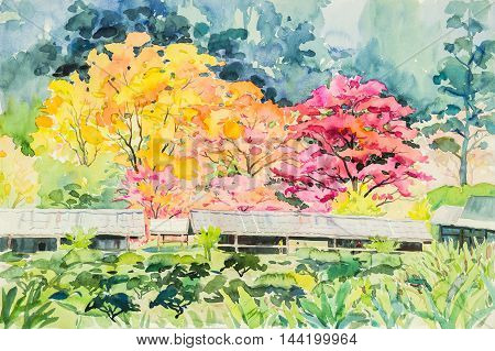 watercolor painting yellow orange color of wild himalayan cherry flowers in sky and cloud background original painting.
