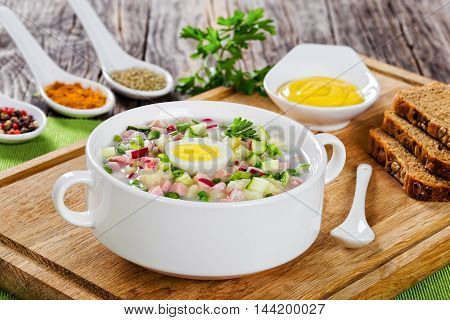 meat potato radish cucumber egg cold No-Cook soup with greek yogurt sprinkled with spring onion in white cup with spices and mustard in gravy boat on cutting board view from above close-up