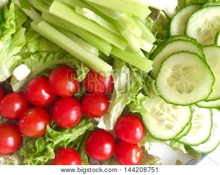 Mixed salad with lettuce, cucumber, celery and tomato