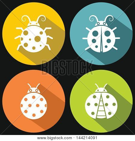 Ladybugs on yellow background with shadow. White insect in circle. Vector illustration