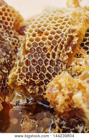 Close-up of yellow fresh and healthy honeycomb background