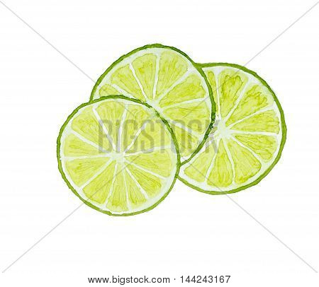 Three Slices Of Lime Isolated On White Background. Watercolor Illustration.