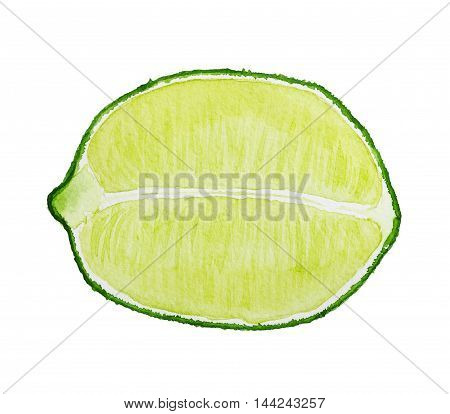 Watercolor Image Of Half Of Lime