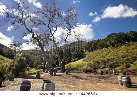 Wine Barrel Picnic Area