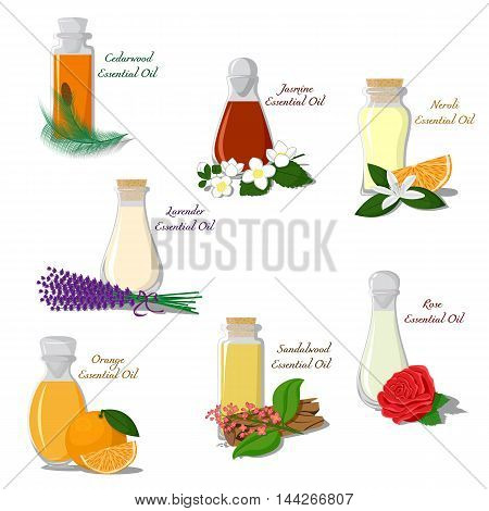 Vector set of bottles filled with essential oils
