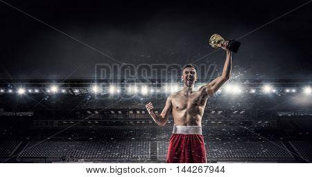 Boxer man celebrate victory . Mixed media