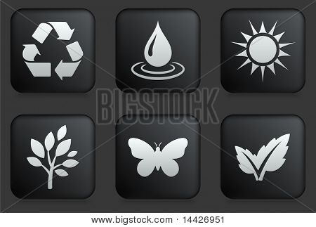 Ecology Icons on Square Black Button Collection Original Illustration