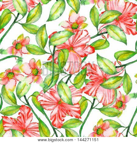 A seamless pattern with the watercolor red exotic flowers, hibiscus on a white background