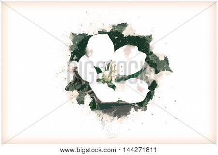white flower of a blooming apple tree, spring. Vintage painting, background illustration, beautiful picture, abstract texture