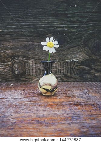 Even the small flower can guide to rustle in the big world.