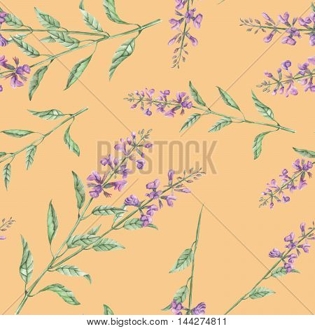 Seamless floral pattern with salvia flower, hand drawn in watercolor on a warm orange background