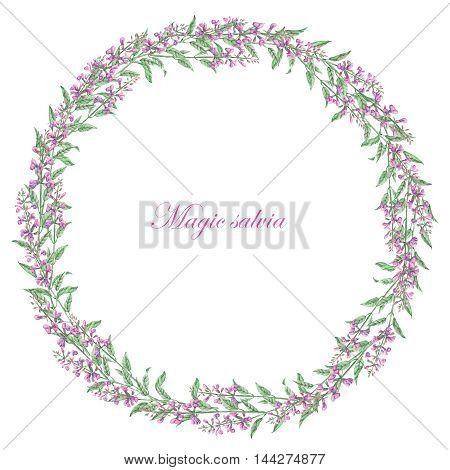 Wreath of salvia painted in watercolor on a white background; frame,  decoration postcard or invitation for wedding, celebration, holiday