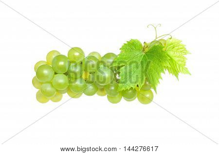 White grapes isolated on a white background