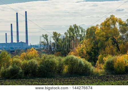 Autumn Yellow Trees Chp Combined Heat And Power,