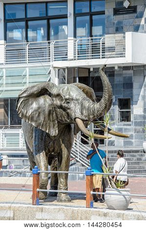 CAPE TOWN, SOUTH AFRICA - FEB 22, 2013: Elephant statue in Cape Town, South Africa. Cape town is the most popular international touristic destination in Africa