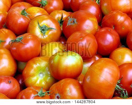 Large tomatoes on bazaar in Tel Aviv Israel