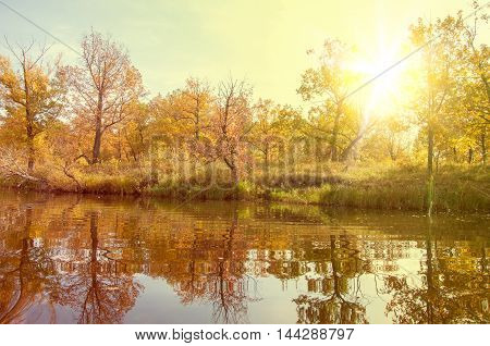 Autumn, Fall, Leaf Fall, Fall Of The Leaf.