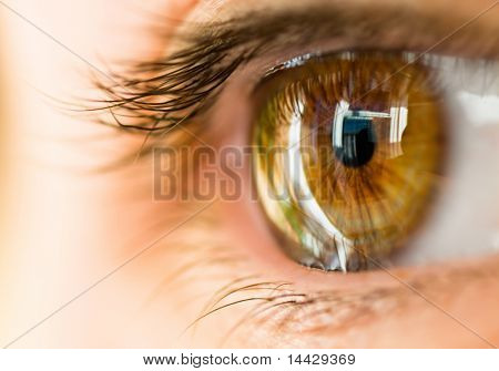 das Makro-Bild des braunen Auges
