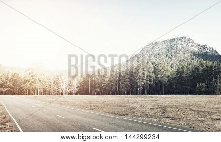 Natural summer landscape with asphalt road to horizon