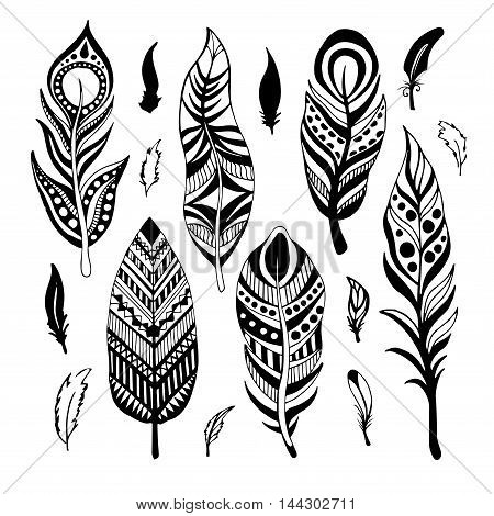 Set of Ethnic feathers. Hand drawn feathers. Vector illustration.