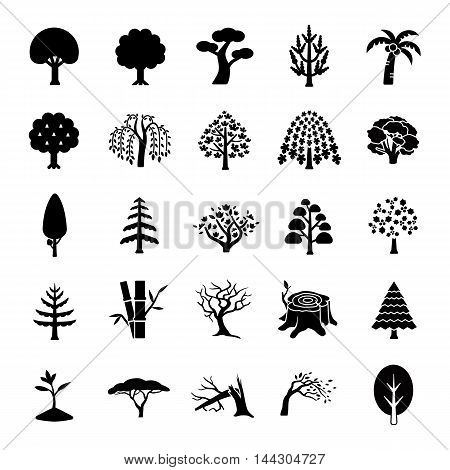 25 Trees glyph vector icons collection set