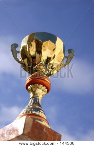 Trophy And Sky