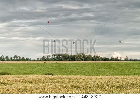 Air Balloons Over The Field