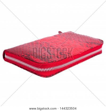 Fashion exotic snakeskin (python) handmade purse wallet isolated on a white background
