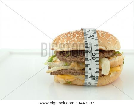 Burger In Centimeters