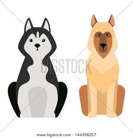 Shepherd dog pet and icon shepherd dog vector. Flat shepherd retriever dog domestic animal vector illustration. Dog breed isolated on white