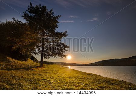 Sunset and tree by the shore of water. Water reservoir Kretinka. Moravian landscape.