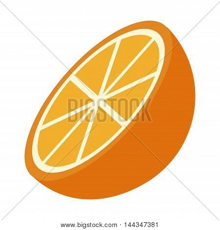 orange organic healthy natural food icon. Flat and Isolated illustration. Vector illustration