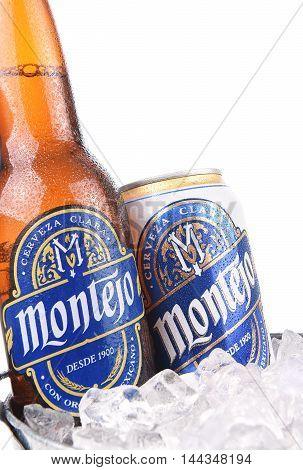 Montejo Beer In Ice Bucket