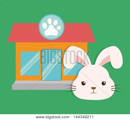 rabbit cartoon pet shop store animal con. Colorful and flat design. Vector illustration