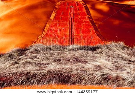 crocodile Skin. Artistic leather crocodile, animal, texture, background, reptile,