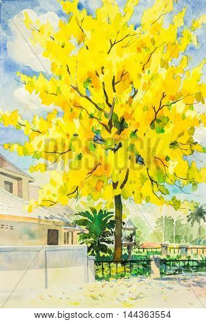 watercolor painting yellow orange color of golden shower tree flowers in sky and cloud background original painting