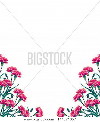 Bouquet of flowers carnation isolated on white background.