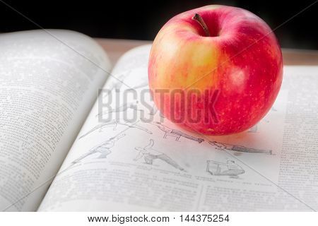 Lovely fresh ripe apple and book pages