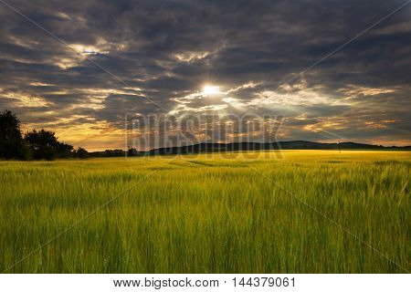 Sun rays shining through the clouds in a field of grain. Moravian landscape Sudice