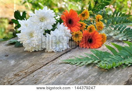 pretty flowers on a wooden and old plank in a garden