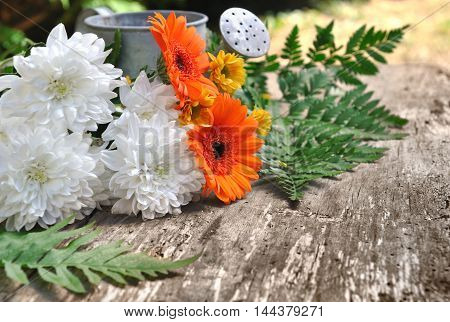 pretty flowers on a wooden and old plank with metal watering can in a garden